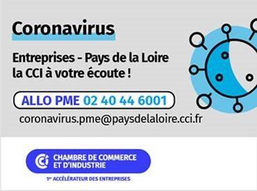 Coronavirus :Soutien_des _PME _Dinamic_Entreprises